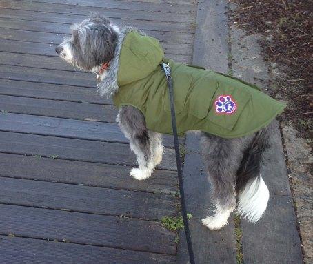 Mon manteau ...
