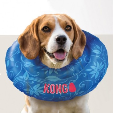 collerette-cushion-kong