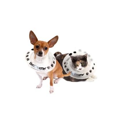 collier-boobooloon-accessoire-pour-chien-et-chat
