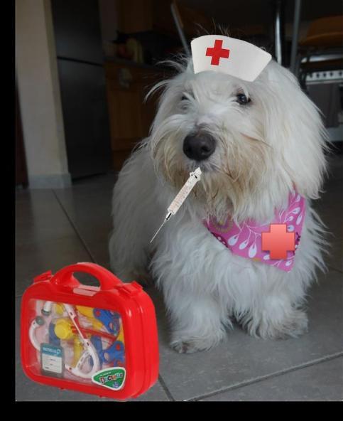 lunainfirmière.jpg