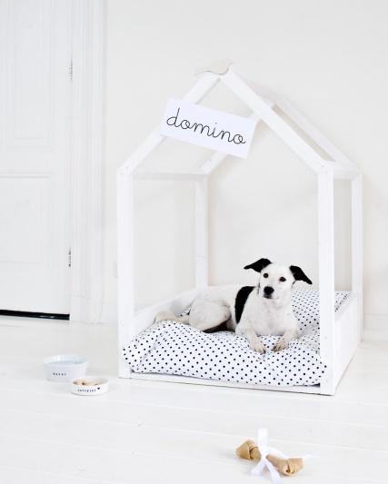diy-animaux-7-chien.jpg