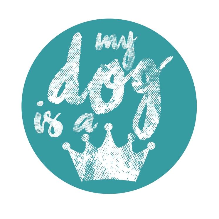 logo MDIAQ-B