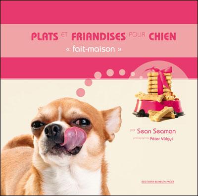 Plats-et-friandises-pour-chien-fait-maison-
