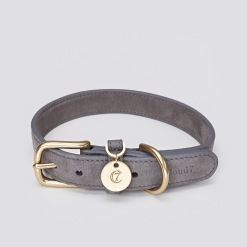 05 07 C7 Dog Collar Tiergarten Taupe SCREEN