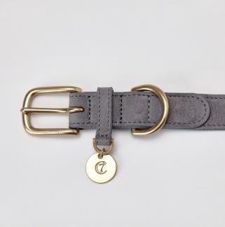 05 09 C7 Dog Collar Tiergarten Taupe Detail2 SCREEN