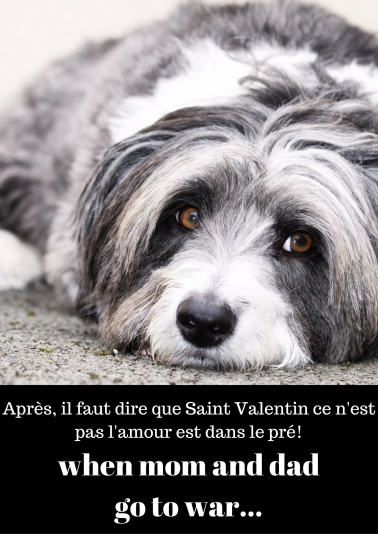 Après, il faut dire que Saint Valentin ce n'est pas l'amour est dans le prés!