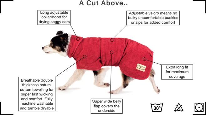 dog_drying_robe.jpg