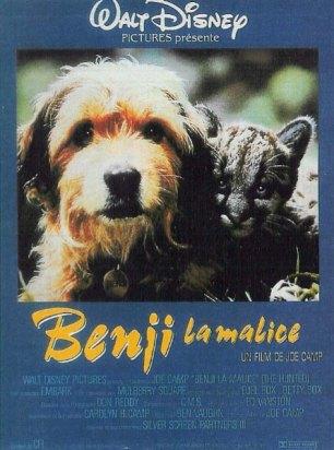 affiche-benji-malice-01.jpg