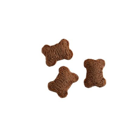 biscuits-puppy.jpg