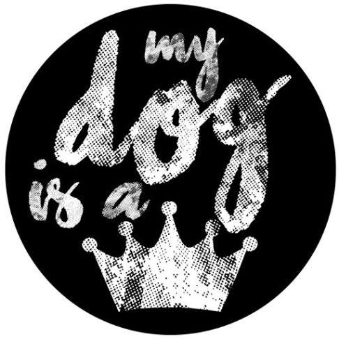 cropped-logo-mdiaq1.jpg