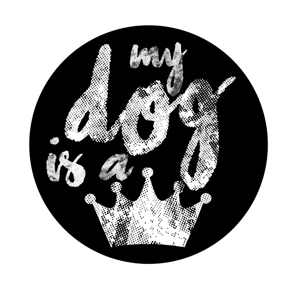 logo MDIAQ