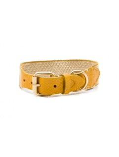 collar-james-amarillo