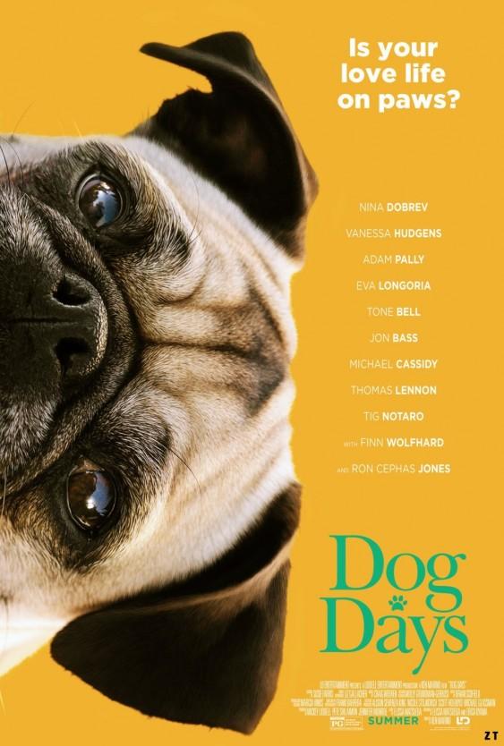 Dogdays (12)