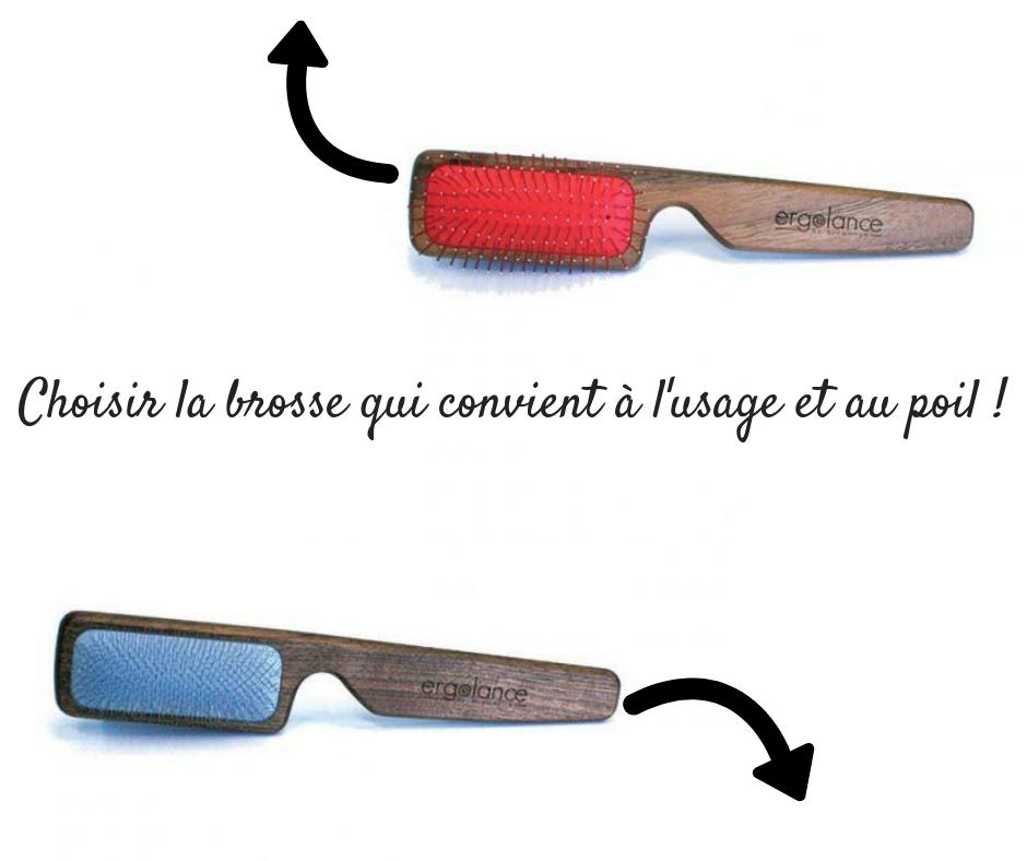 Choisir la brosse qui convient à l'usage et au poil !.jpg