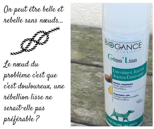 Choisir la brosse qui convient à l'usage et au poil ! (1).jpg