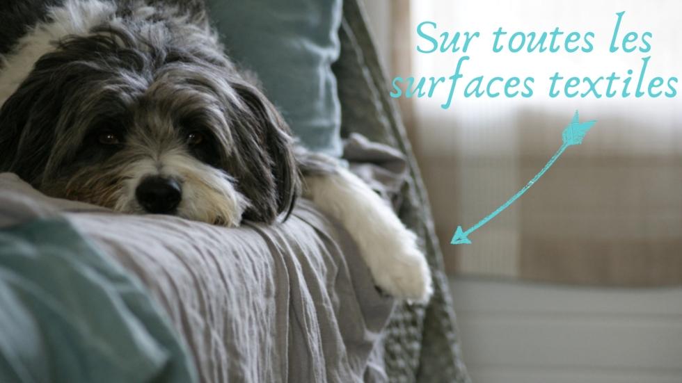 Sur toutes les surfaces textiles (1)